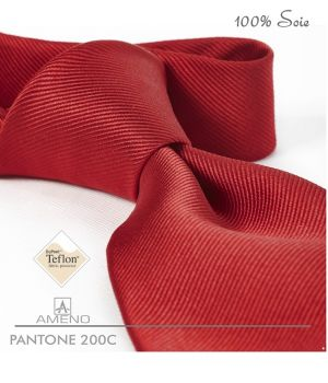 Cravate 100% Soie, Rouge Groseille, Doux au toucher, Traité anti taches, Largeur 7 cm