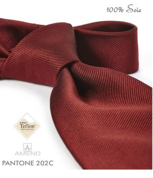 Cravate 100% Soie, Bordeaux, Doux au toucher, Traité anti taches, Largeur 7 cm