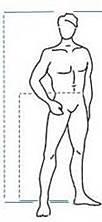 Stature et Hauteur extérieure de la jambe