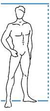 Stature, Hauteur Homme